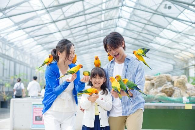 掛川花鳥園